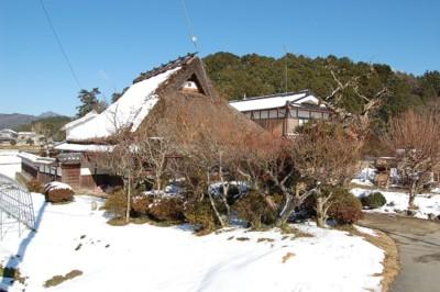 sasayamaka1.jpg